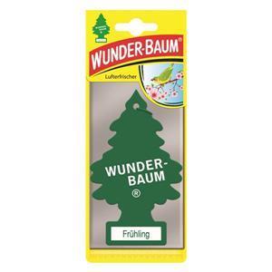 Mirisni borić proljeće 1/1 Wunder-Baum