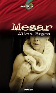 MESAR, Reyes