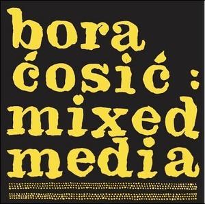Mixed media, Ćosić, Bora