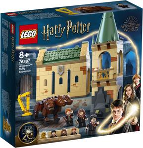 LEGO Harry Potter Hogwarts™: Susret s Bundijem 76387