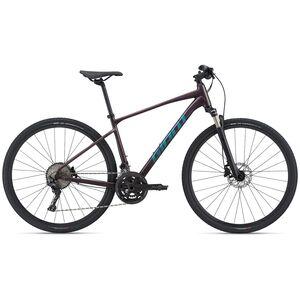 GIANT trekking bicikl Roam 0 Disc, ljubičasta, vel.L