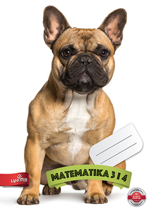Matematika 2 za treći i četvrti razred Lipa Mill