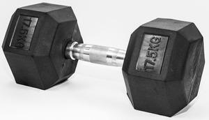 FITMOTIV gumirana bučica Hex 17,5 kg