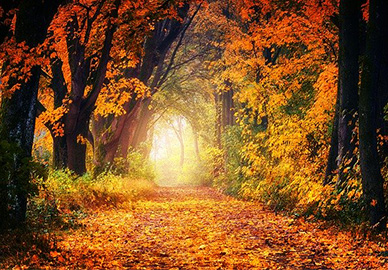 uporaba klime u jesen