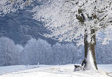 uporaba klime u zimi
